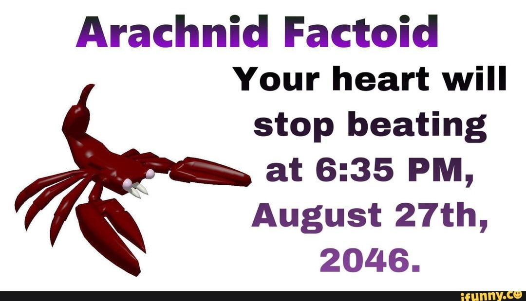 Arachnicl Factoid Your Heart Will Stop Heating At 6 35 Pm August 27th 2046 Ifunny