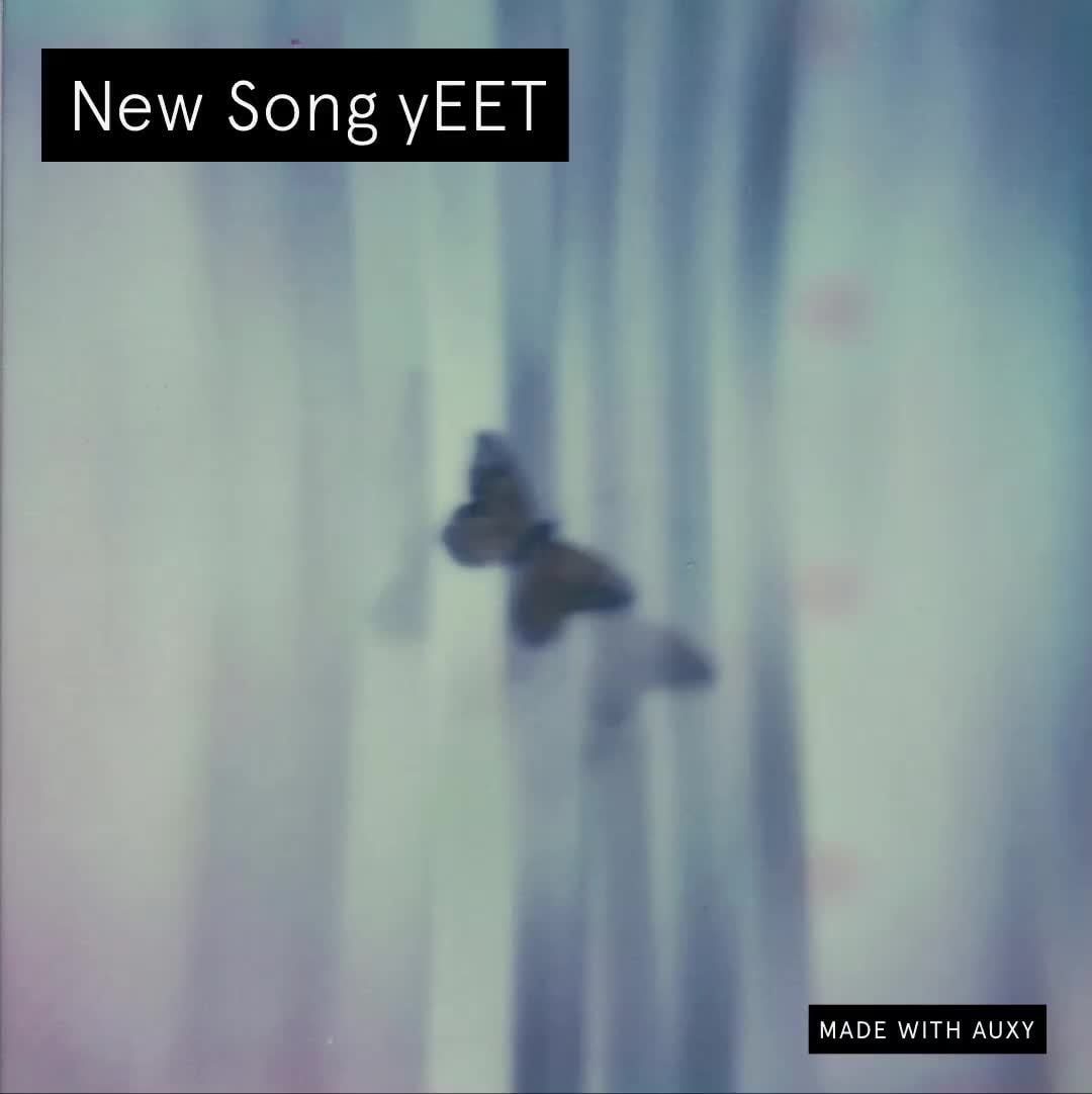 New Song Yeet Ifunny The song was «yeet» by quill feat. ifunny