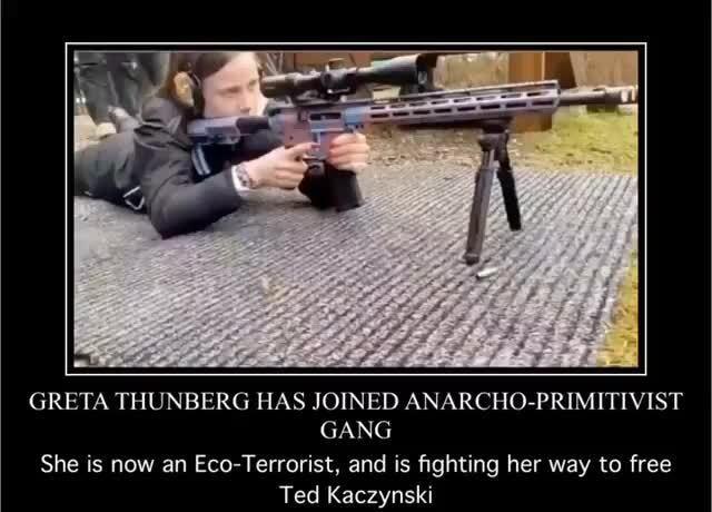 Greta Thunberg Gun Meme : Greta Thunberg Trump Un Viral ...