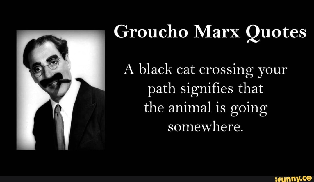 Groucho Marx Quotes A Black Cat Crossing Your Path Signifies