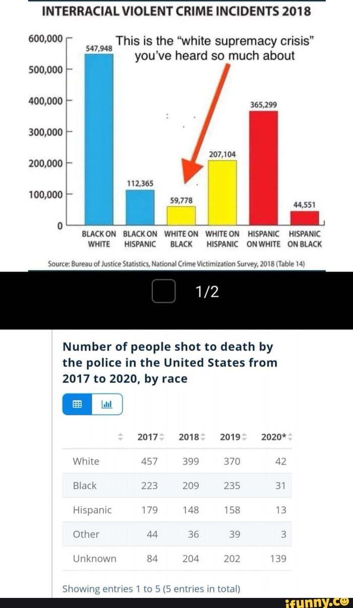 Interracial violent crime statistics