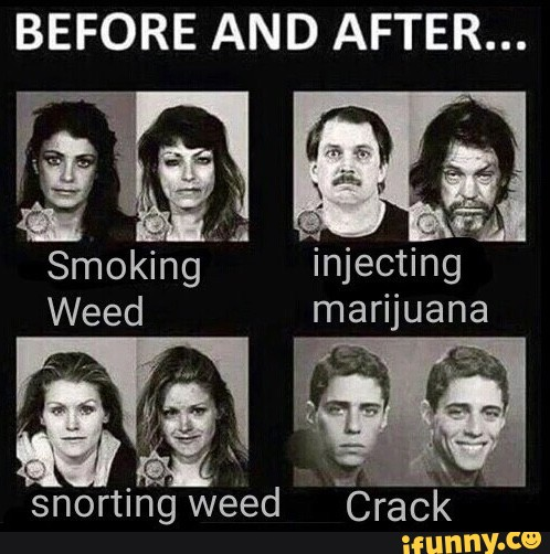Before And After M Snorting Weed Ifunny