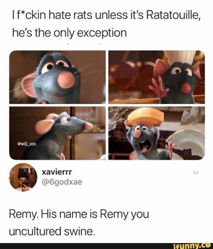 If Ckin Hate Rats Unless It S Ratatouille He S The Only Exception Remy His Name Is Remy You Uncultured Swine Ifunny Adjective uncultured (comparative more uncultured, superlative most uncultured). ifunny