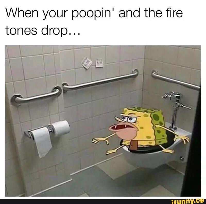 When your poopin' and the fire tones drop     - iFunny :)