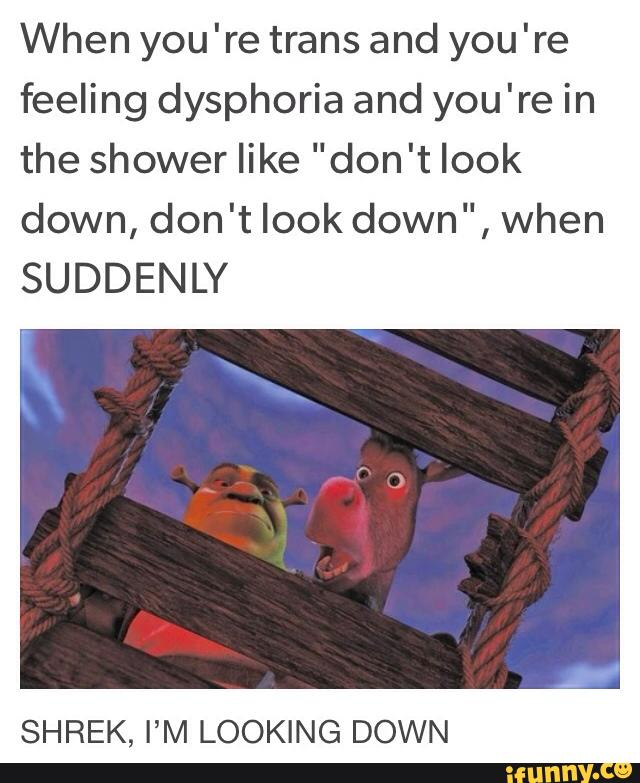 When You Re Trans And You Re Feeling Dysphoria And You Re In The Shower Like Don T Look Down Don T Look Down When Suddenly Shrek I M Looking Down Ifunny
