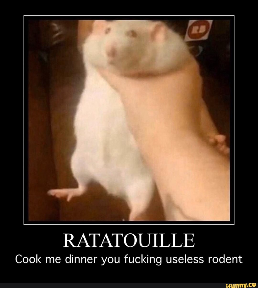 Ratatouille Cook Me Dinner You Fucking Useless Rodent Ifunny