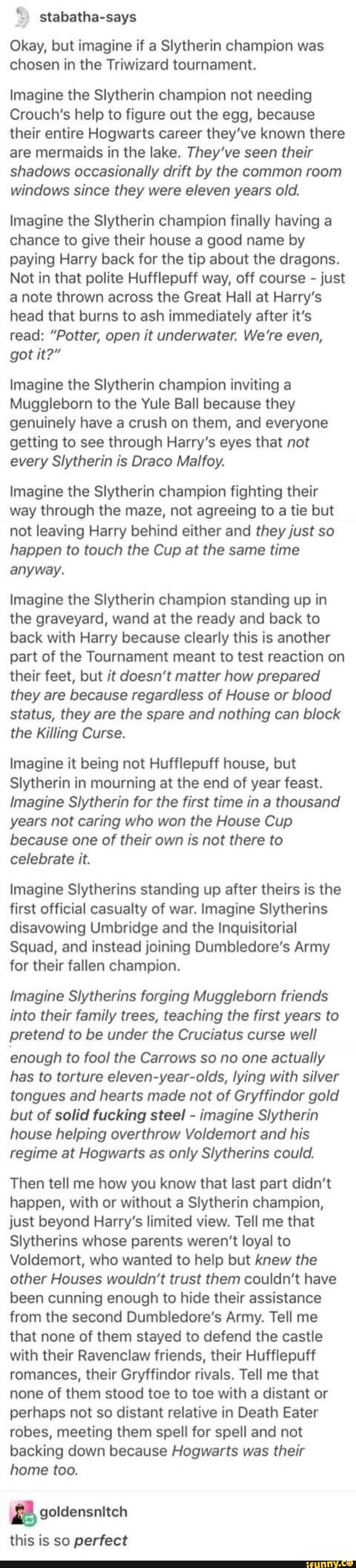 É-ª stabatha-says Okay, but imagine if a Slytherin champion