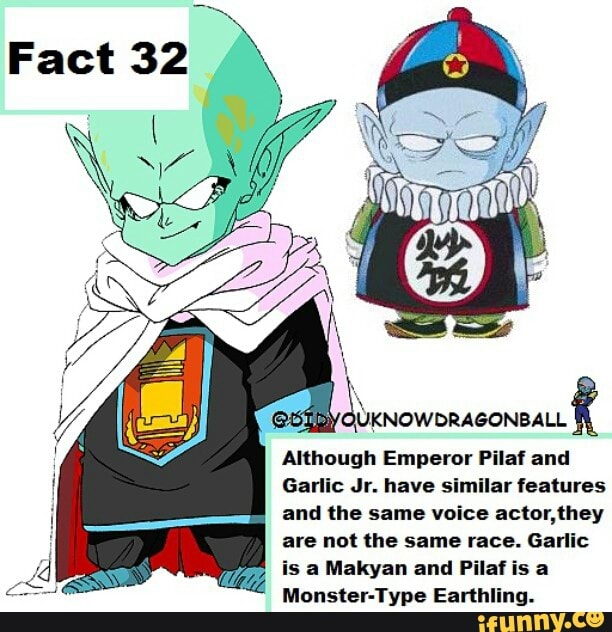 Although Emperor Pilaf And Garlic Jr Have Similar Features And Lhe Same Voice ªctor Hey Are Not Lhe Same Race Garlic Is Makyan And Pilaf Is Monster Yype Earthling Ifunny He also doesn't seem to grow taller at all (neither does emperor pilaf) and has the same approximate skin tone as pilaf. although emperor pilaf and garlic jr