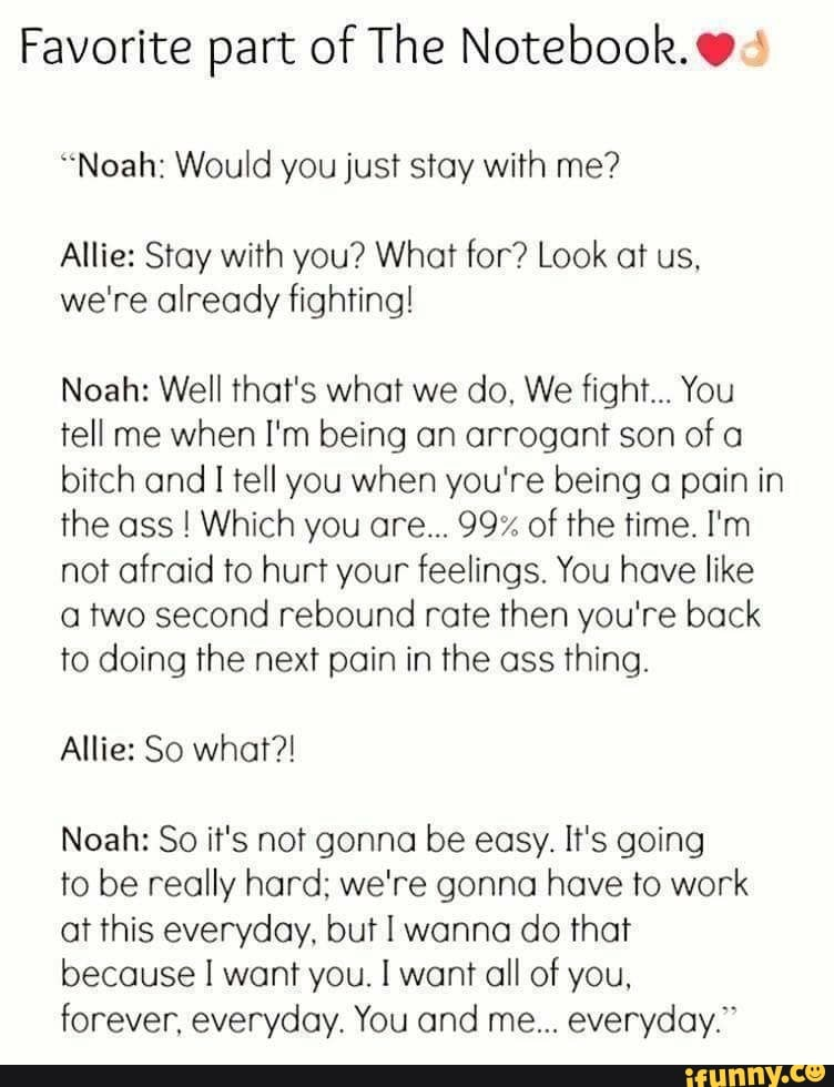 Favorite Part Of The Notebook Noah Would You Just Stay