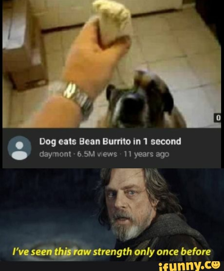 Dog Eats Bean Burrito In 1 Second Daymont 6 5m Views 11 Years Ago On I Ve Seen Thistaw Strength Only Once Before Ifunny