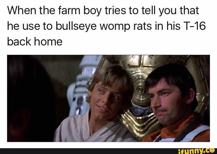 When The Farm Boy Tries To Tell You That He Use To Bullseye Womp Rats In His T 16 Back Home Ifunny Womp rats were creatures native to tatooine, and were considered pests by local moisture farmers who hunted them for sport. ifunny