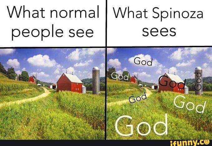 What normal I What Spinoza people see - iFunny :)