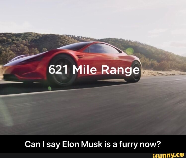 Can I say Elon Musk is a furry now? - iFunny :)