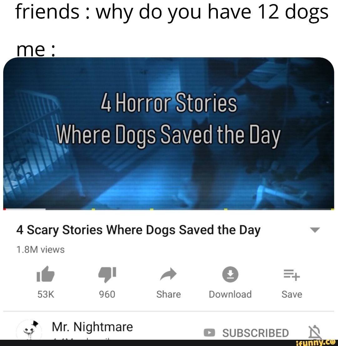 Friends Why Do You Have 12 Dogs Me A Horror Stories Where Dogs Saved The Day 4 Scary Stories Where Dogs Saved The Day V 1 8m Views Ifunny Nightmare is a youtube channel hosting a wide variety of scary themed content such as terrifying recordings and horror stories, though things like lists … ifunny