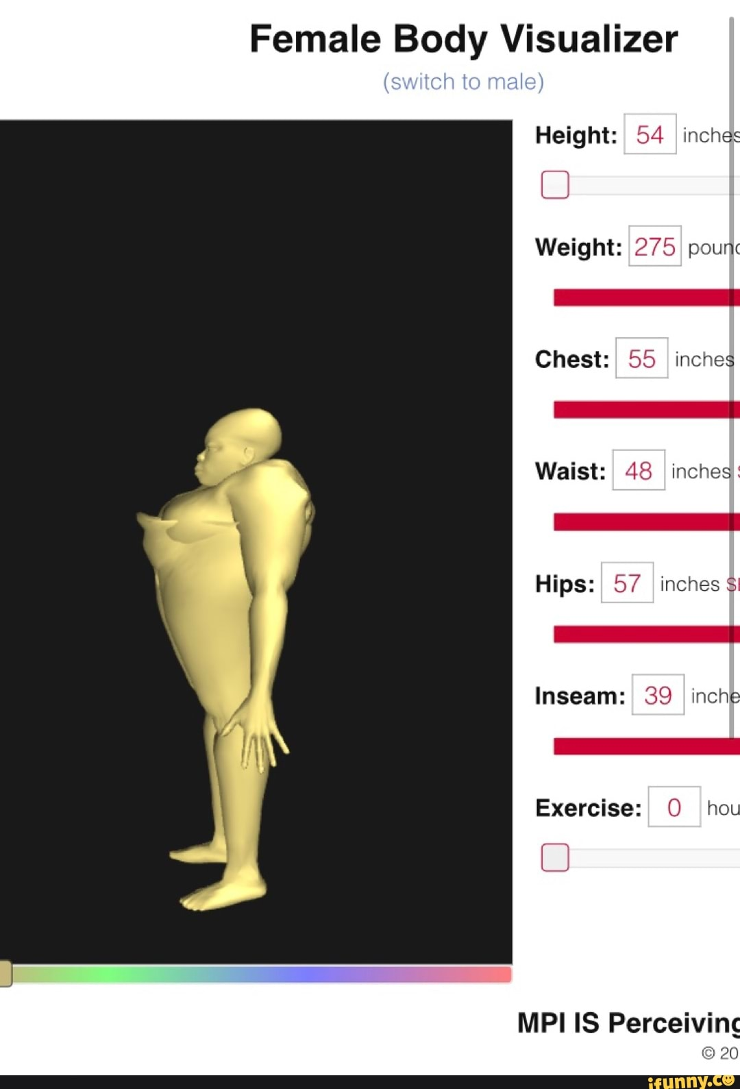 female body visualizer metric