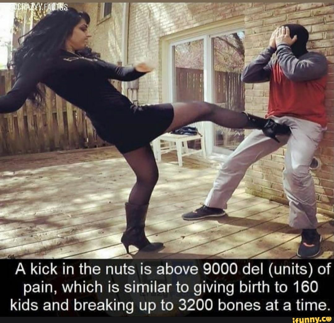 AAA A kick in the nuts is above 9000 del (units) of pain