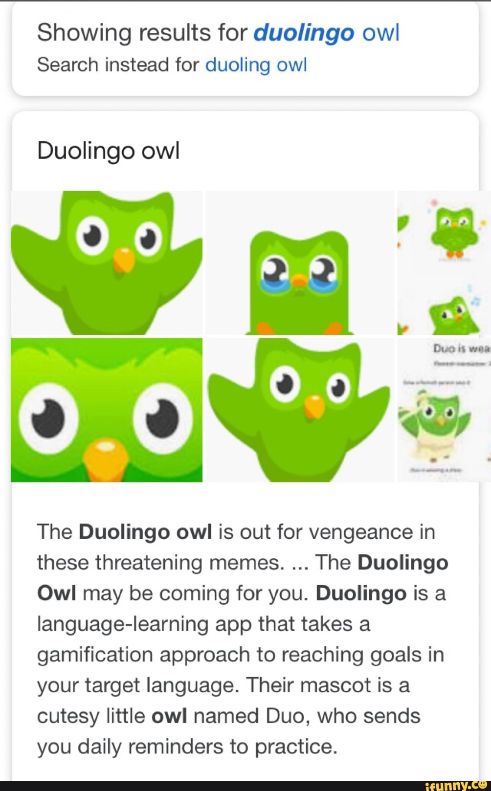 Showing Results For Duolingo Owl Search Instead For Duoling Owl