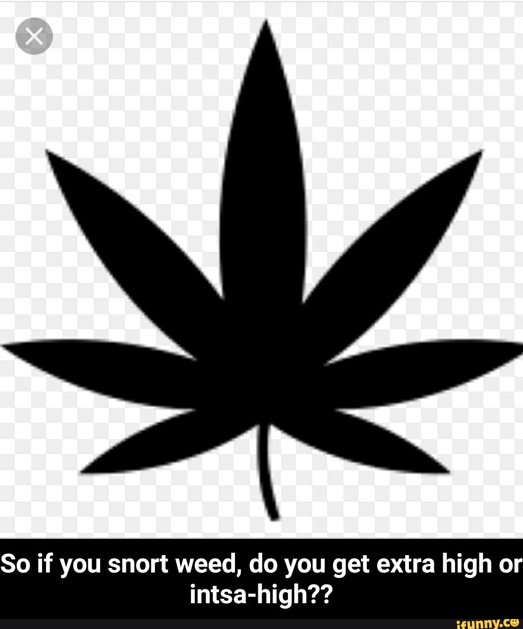 80 If You Snort Weed Do You Get Extra High Or Intsa High So