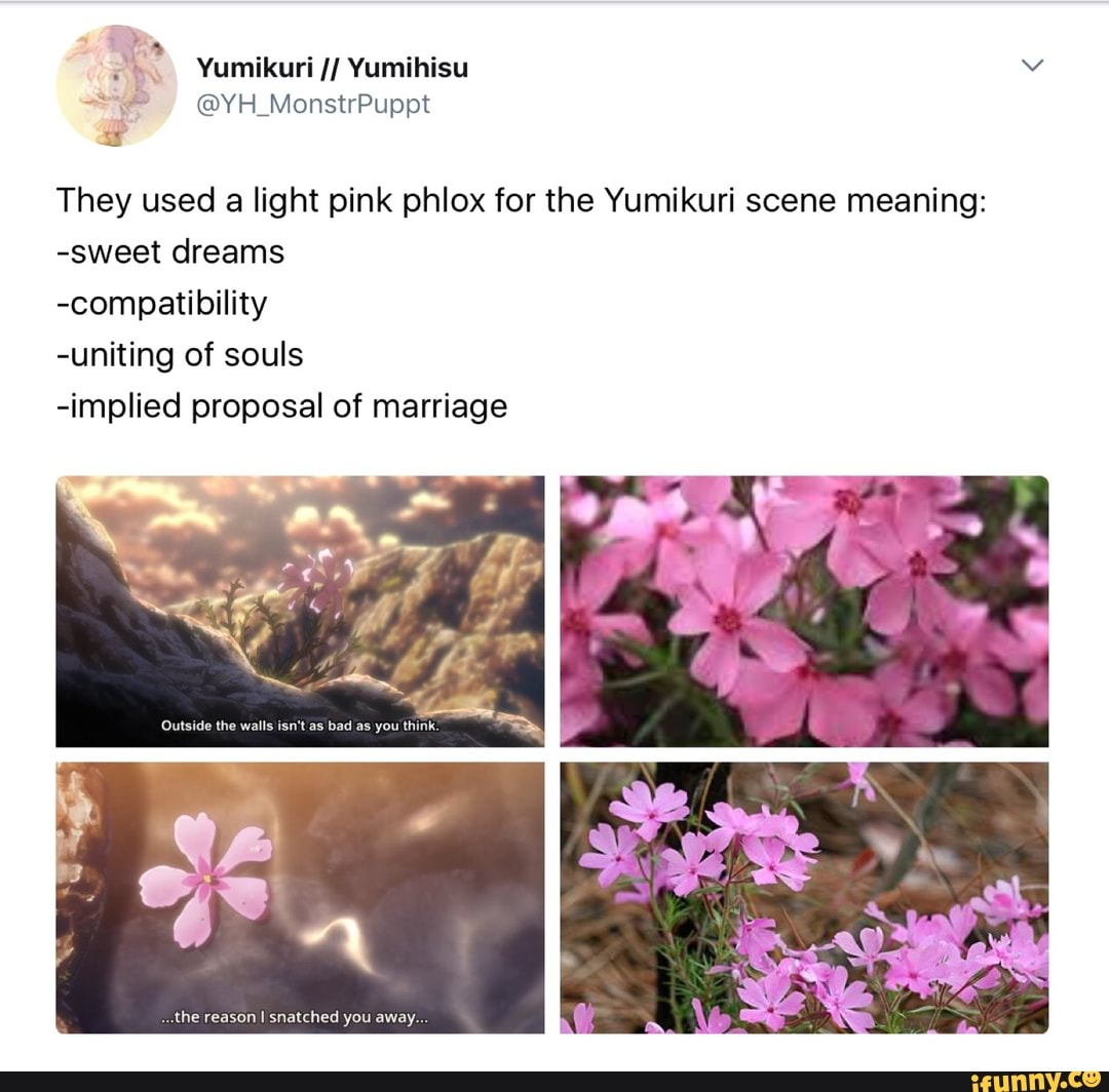 They used a light pink phlox for the Yumikuri scene meaning