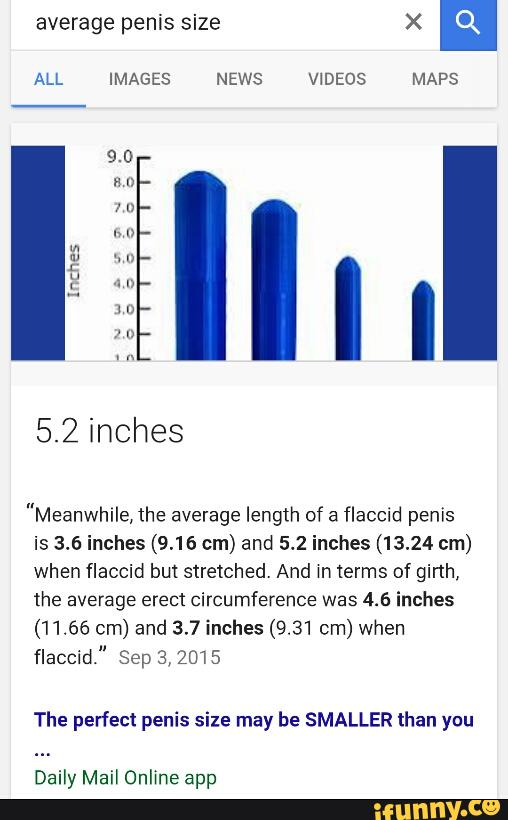 Average penis size when flaccid