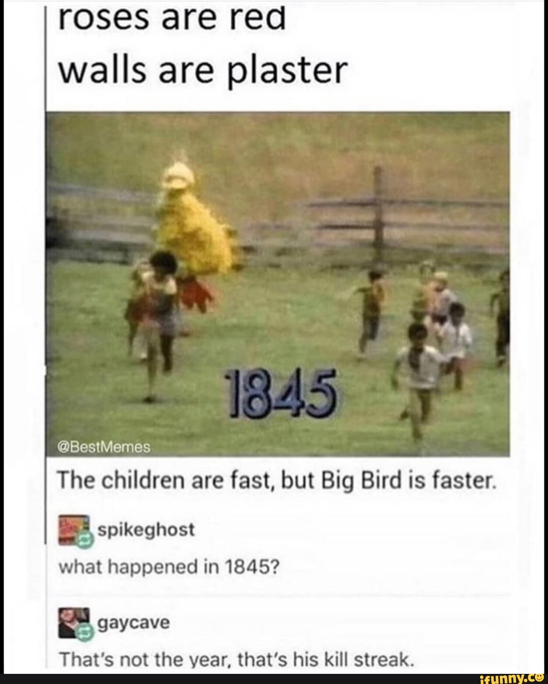 roses are red walls are plaster big bird