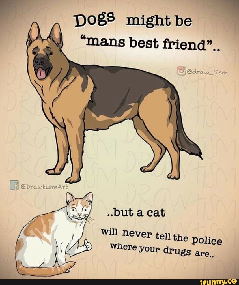 """""""mans best friend"""". ..but a cat will never tell the police where your drugs are., Dogs might be"""