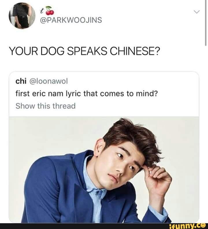 YOUR DOG SPEAKS CHINESE? chi @Ioonawol first eric nam lyric