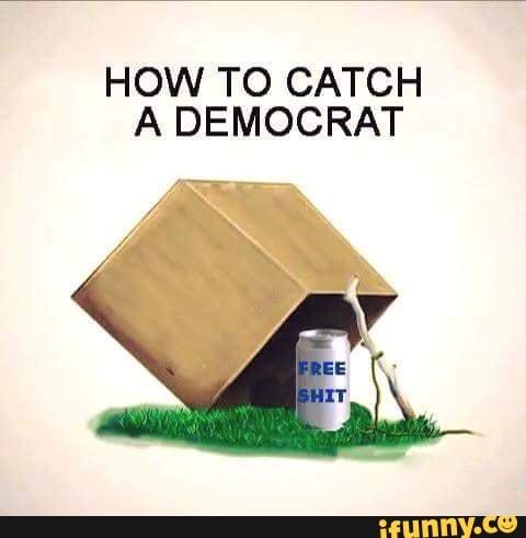 HOW TO CATCH A DEMOCRAT