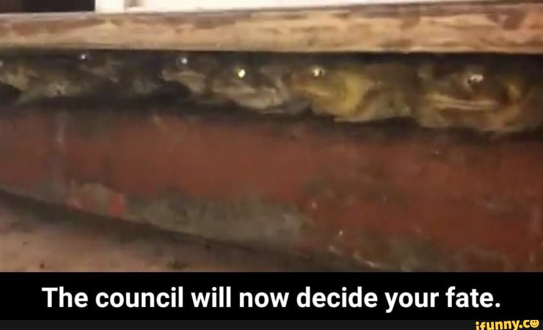 The Council Will Now Decide Your Fate Ifunny The council has decided that you must feed the council. decide your fate ifunny