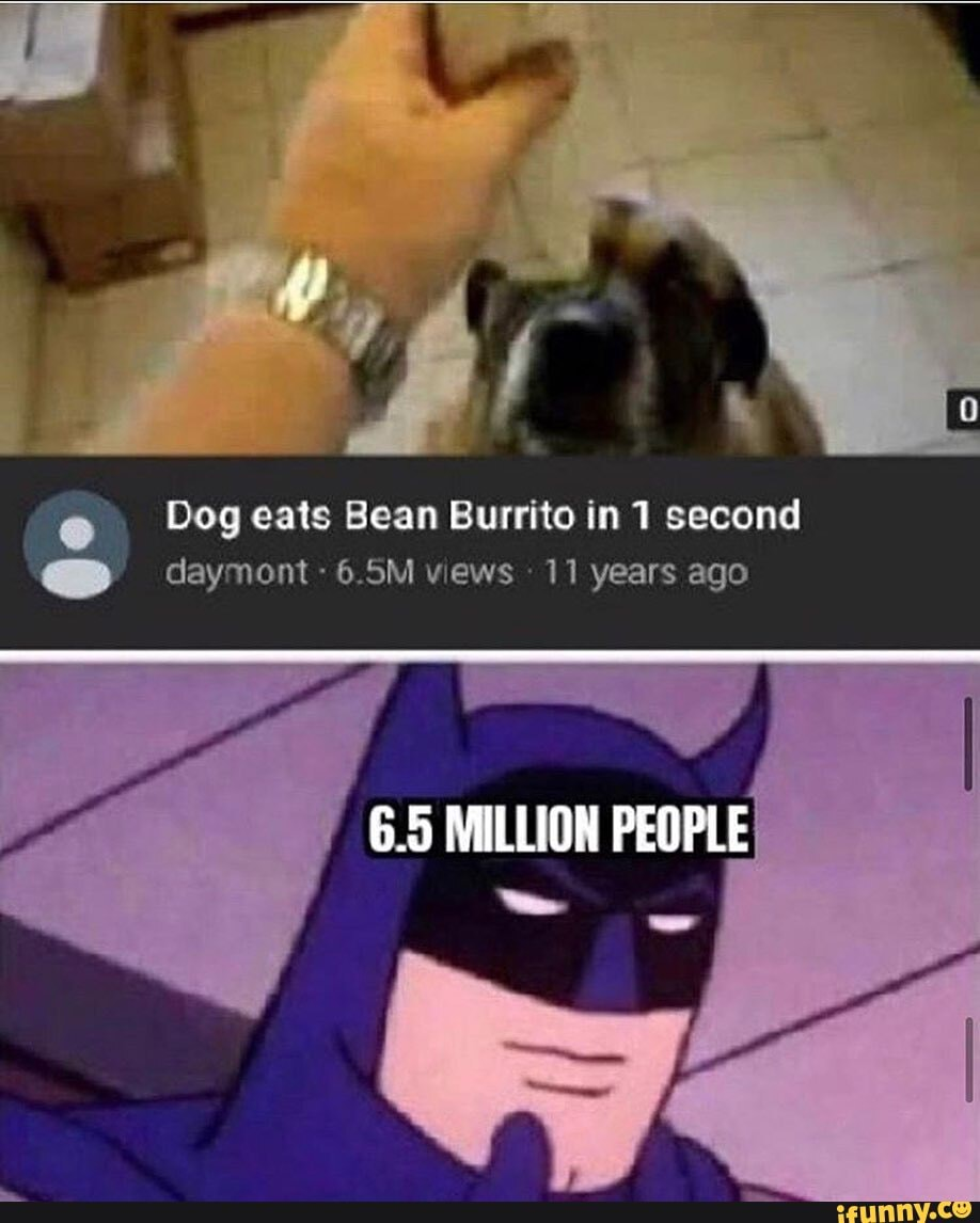 Dog Eats Bean Burrito In 1 Second Cea Tel A Eee Ea Ifunny