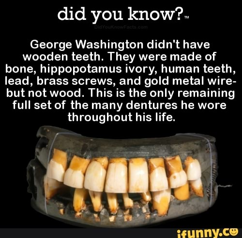Did You Knowm George Washington Didnt Have Wooden Teeth They Were