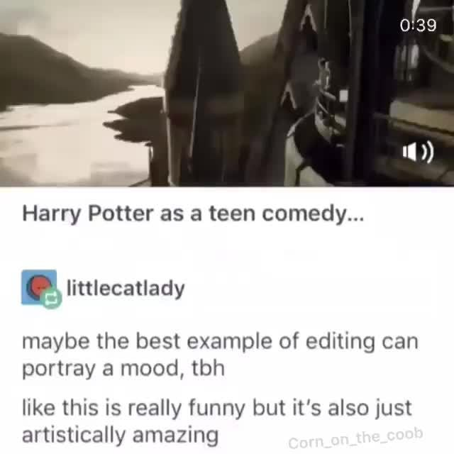 Harry Potter As A Teen Comedy Maybe The Best Example Of Editing Can Portray A Mood Tbh Like This Xs Really Funny But It S Also Just Artlcimallv Amn7inn Ifunny
